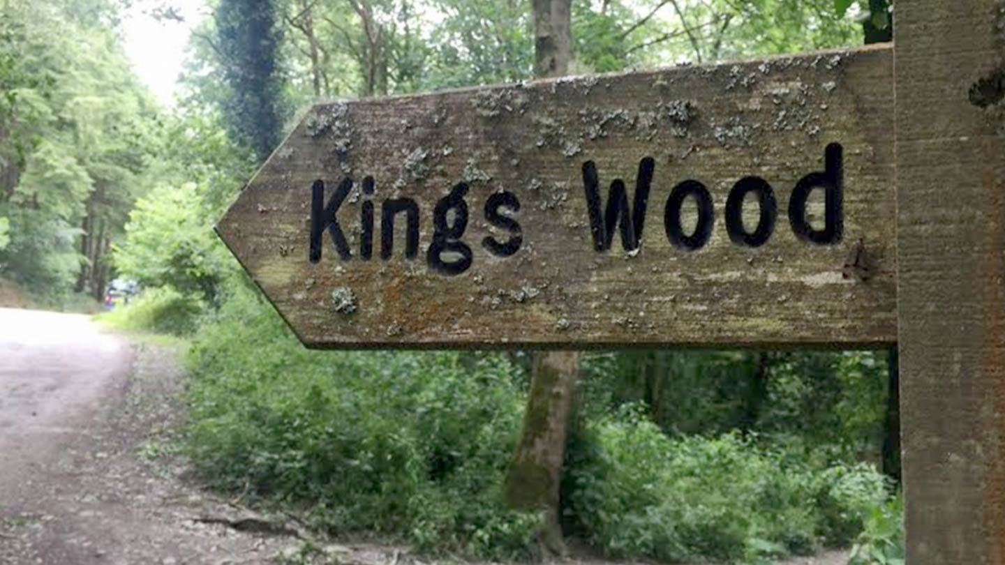 Kings Wood | Discover St Austell
