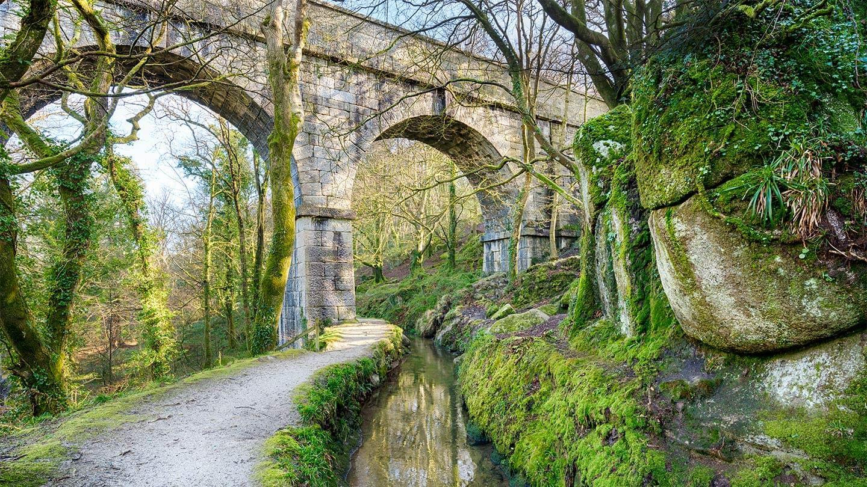 Luxulyan Valley   Discover St Austell
